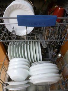 rex lavastoviglie non